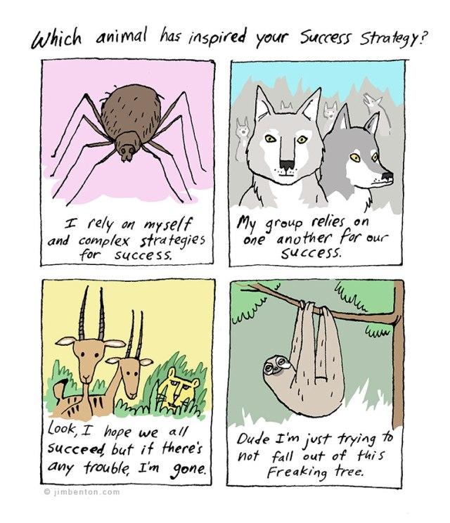 animal inspiration