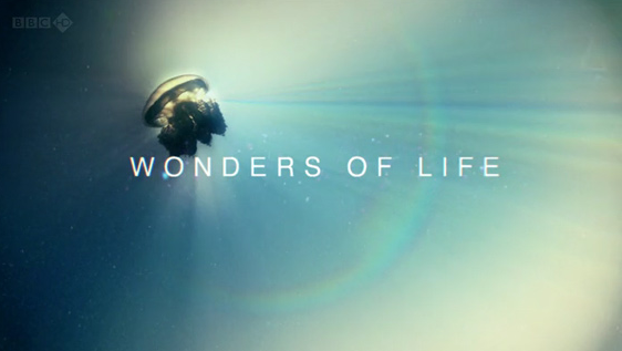Wonders of Life: What is Life?