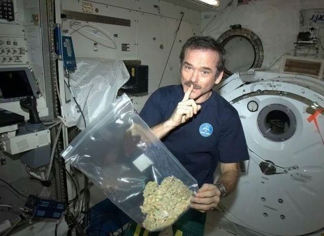 A very fake photo of Canadian Astronaut, Chris Hadfield